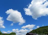 絵に描いたような夏空の風情 - Photo Album