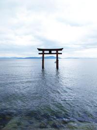 奥琵琶湖 - amour sacre