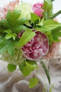 今季ラスト芍薬がエッジドサーモン♪ - お花に囲まれて