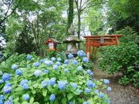 写真の練習で宝八幡宮へ - ワカバノキモチ 朝暮日記