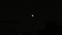 オレンジ色の立待月 - 好食好日