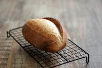 酒種仕込み、ライ麦のふんわりカンパーニュ - Takacoco Kitchen