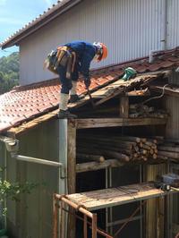 屋根の続きです。 - 風のいろ