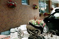恵庭商工会議所の花かごと市の花スズラン - 照片画廊