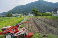 豆の圃場 - 良え畝のブログ