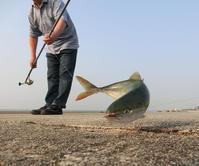 釣りシーズン到来 - 風の吹くまま何でもシャッター