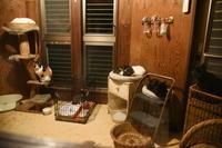 強面ビビリ王子の家猫修業記その28ケージオープン! - りきの毎日