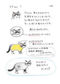 ミミちゃん1 - 今日もゆくねこ