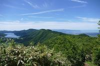 地味な低山、松田山に登る その5 - 季節(いま)を求めて