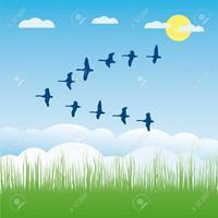 渡り鳥今日はいずこに孤独なし - マイ川柳