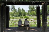 公園日和…① - Taro's Photo