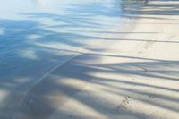 第900回  Picturesque landscapes in Hawaii - 湘南群青 -The sunset  blue -