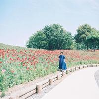 昭和記念公園-8- - ayumilife with kate