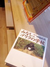 みなしごゴリラの学校 - a diary of primates