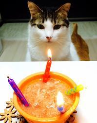 HAPPY CAT4周年 - クランのあしあと
