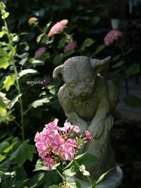 庭を楽しむ♪季節のお花に囲まれるガーデンオーナメントたち - miyorinの秘密のお庭