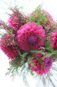 パリスタイル金澤 - お花に囲まれて