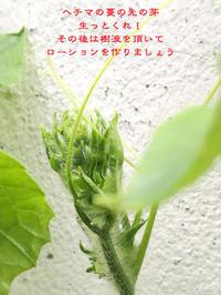 拘る - Tangled with 2・・・・・