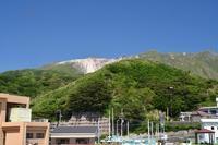 天上山のオオシマツツジ(良)5月23~24日撮影 - 野山の花たち