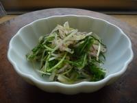 大根、水菜、大葉の千切りサラダ - LEAFLabo