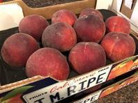 Peach (ピーチ) - ファルマウスミー