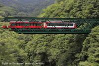 緑の中を走る赤い列車 - Light or Darkness?