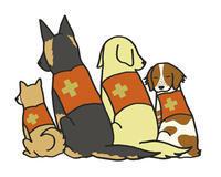 ペットの防災~僕たちを守って2 - ビーグル犬フロドのひとりごと