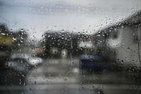 雨 - たなぼた