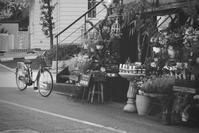 ✿自転車 - ✿happiness✿