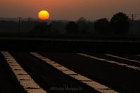 オレンジ色の - ekkoの --- four seasons --- 北海道