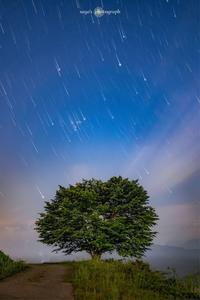 星ながし - o'night