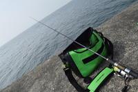 キス釣り2 - 釣り者の日々