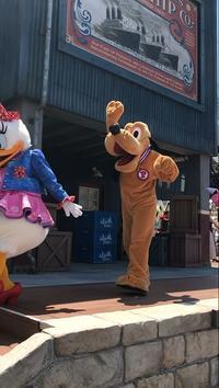 [写真のみ]ハローニューヨークはじっこ席 - Ruff!Ruff!! -Pluto☆Love-