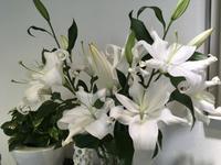 今週のお花 - My style