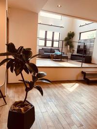 素敵なお部屋に素敵な植物。。。 - ブレスガーデン Breath Garden 大阪・泉南のお花屋さんです。バルーンもはじめました。