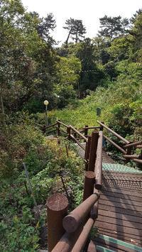 済州島 3大瀑布2つ目は「天地淵瀑布」 - 晴れ時々Seoul