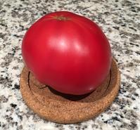 桃太郎トマト第一号を食す - アバウトな情報科学博士のアメリカ