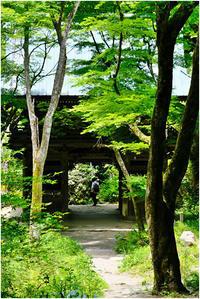 山門に至る - HIGEMASA's Moody Photo