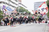 2019犬山踊芸祭 『浜松学生連鰻陀羅』 - tamaranyのお散歩2
