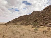 ナミビア旅行記(4) 筒井さん帰国、白川さん到着 - さぼってばかりの虫屋日記2