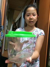 蝶々になりました~ - takatakaの日記