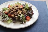 牛肉とレンコンのおかずサラダ - カタノハナシ ~エム・エム・ヨシハシ~