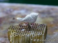 たたずむ小鳥 - 号号日記