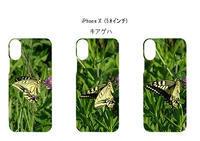 蝶:キアゲハ撮りました。 - 写真で楽しんでます! スマホ画像!
