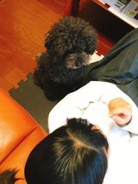 梅雨時期の食事 - happy go Lucky!!