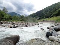 蒲田日和?と大雨後のホーム - Ugnakamura's Blog