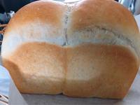 ホシノ山型食パンのつくレポ - 横浜パン教室tocotoco〜ワンランク上のパン作り〜