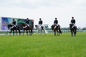GⅠ馬が6頭出走、第60回宝塚記念(1)本場馬入場 - Turfに魅せられて・・・(写真紀行)