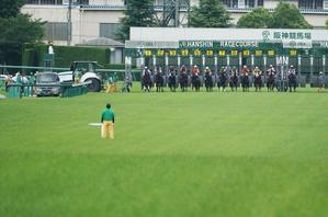 GⅠ馬が6頭出走、第60回宝塚記念(2)レース - Turfに魅せられて・・・(写真紀行)