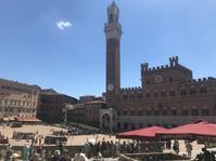 シエナのパリオ:2019年7月2日まであと一週間♪ - フィレンツェのガイド なぎさの便り